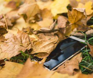 Что делать, если пропал или украден смартфон?