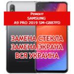 ремонт Samsung A9 Pro 2019 SM-G887FD замена стекла и экрана