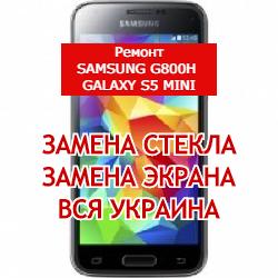 ремонт Samsung G800H Galaxy S5 mini замена стекла и экрана