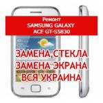 ремонт Samsung Galaxy Ace GT-S5830 замена стекла и экрана