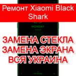ремонт Xiaomi Black Shark замена стекла и экрана