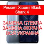 Ремонт Xiaomi Black Shark 4 замена стекла и экрана